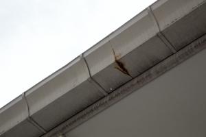 gutters leaking water