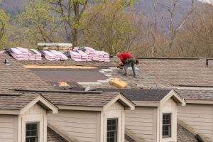 Roofing contractor removing the old shingles from a roof that insurance paid for