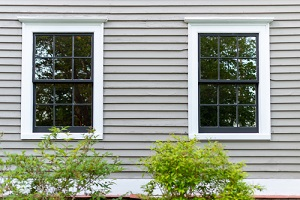 two double hung windows with black wood frames