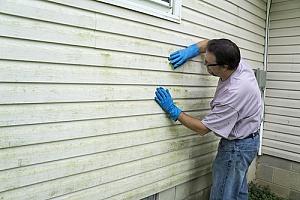 a tach inspecting the mold on the siding