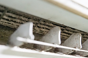 mold on register vents